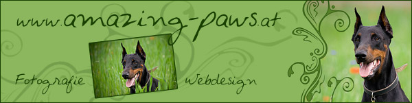 www.amazing-paws.at